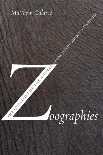 zoographies the question of the animal from heidegger to derrida
